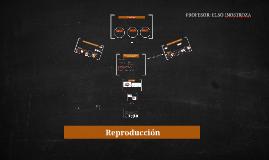 Reproducción (profundizando en el ser humano)
