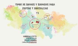 Copy of TIPOS DE ENVASE Y EMPAQUE PARA FRUTAS Y HORTALIZAS