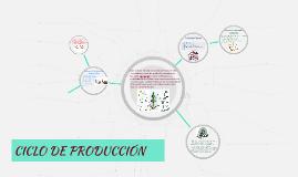CICLO DE PRODUCCIÓN