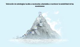 Copy of Valoración de estrategias locales o nacionales orientadas a