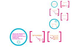 Copy of Análisis del proceso de Administración de Recursos Humanos de B y Z Distribuciones S.R.L