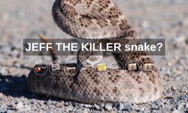 JEFF THE KILLER snake?