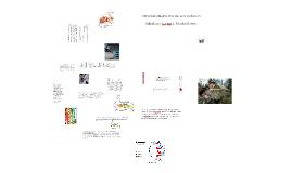 Copy of SISTEMA DIGESTIVO DE LOS CONEJOS