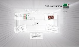 ¿Qué es la Carta de Naturalización?