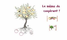 Mémo du coopérant