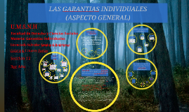 Copy of LAS GARANTIAS INDIVIDUALES
