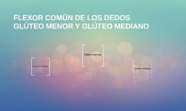 Copy of FLEXOR COMÚN DE LOS DEDOS