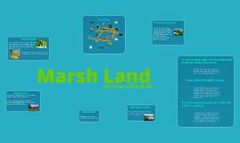 Marsh