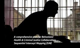 SIM Presentation - 2.17.17