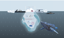 MUN- Prohibiting the hunting of whales in the Antarctic