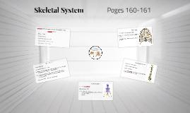 Ch. 13, L4:Skeletal System