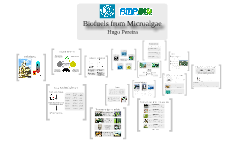 Biofuels from microalgae