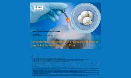 Transferencia de embriones frescos vs congelados en IVF