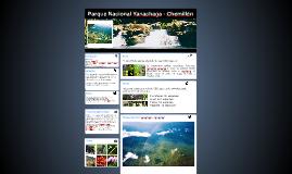 Parque Nacional Yanachaga - Chemillén