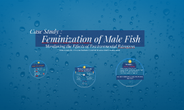 Chapter 2 Wall Project: Feminization of Male Fish