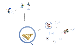 Copy of social trading