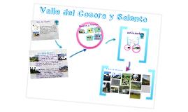 Valle del Cocora y Salento
