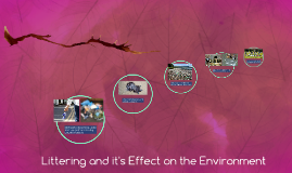 Littering and it's Effect on the Environment