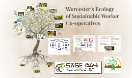 Worcester's Ecology of Sustainable Worker Co-ops