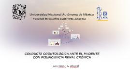 Copy of CONDUCTA ODONTOLÓGICA ANTE EL PACIENTE CON INSUFICIENCIA RE