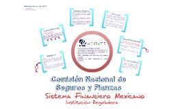 Copy of CNSF