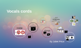 Vocals cords