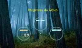 Diagrama de árbol.