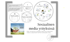 Sosiaalinen media yrityksissä, Intunex Oy