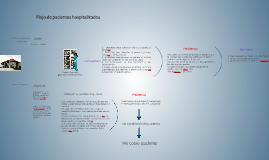 Flujo de pacientes hospitalizados