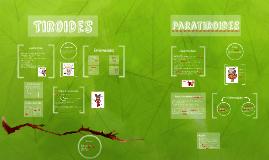 Copy of Tiroides y Paratiroides