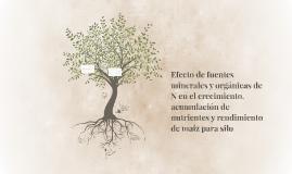 Efecto de fuentes minerales y orgánicas de N en el crecimien