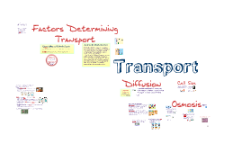 Copy of BI 2: Transport Across Membranes