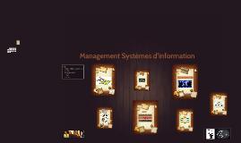 Copy of Gestion des systèmes d'information