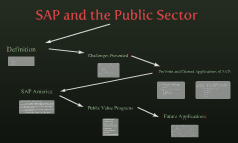 SAP For Public Sectortitle