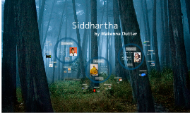 Siddhartha Summer Project