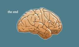 How Music Affects Brain Chemistry