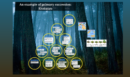 Copy of Primary succession case study