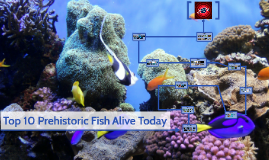 Top 10 Prehistoric Fish Alive Today