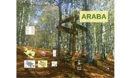 Arabako geografia