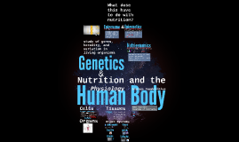 The Human Body (3)