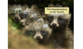 The Populerization of the Tanuki