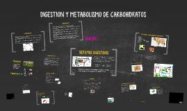 Digestión y metabolismo de Carbohidratos en Rumiantes