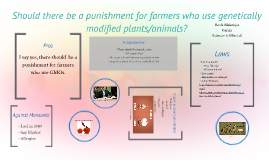 Should there be a punishment for farmers who use the GMO see
