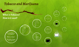 Tobacco, Marijuana and Vaping