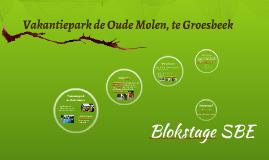 Copy of Vakantiepark de Oude Molen