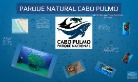 PARQUE NATURAL CABO PULMO