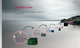 Dead Sea Zones