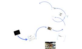 Müll im Ökosystem