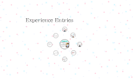 Experience Entries