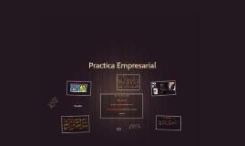 Practica Empresarial